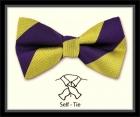 Schleife - Clubstreifen - Purple/Gold - Selbstbinder